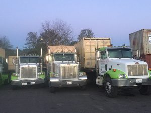 Dumpster Rental Units | Bellingham
